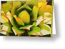Emergence Greeting Card