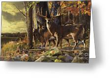 Eminence At The Forest Edge Greeting Card