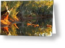Emu Creek Station 2am-111376 Greeting Card