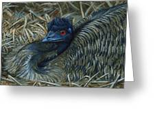 Emu Elegance Greeting Card