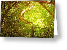 Enchanted Forest 4 Greeting Card