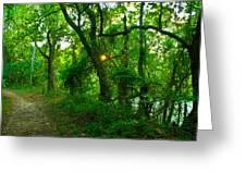 Enchanted Green Path Greeting Card