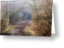 Enchanted Pathway Greeting Card