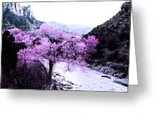 Enchanted Pink Greeting Card