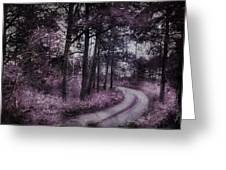 Enchanted Seney Path Greeting Card