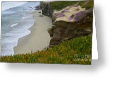Enchanted Spaces California La Jolla Greeting Card