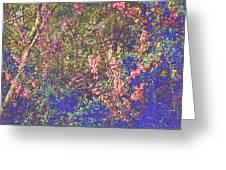 Enchanted Wood II Greeting Card