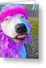 End Bsl Officer Do I Look Like I'm Into Dog Fighting? Greeting Card by Q's House of Art ArtandFinePhotography