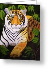 Endangered Bengal Tiger Greeting Card