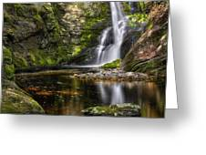 Enders Falls Greeting Card