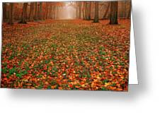 Endless Autumn Greeting Card by Jacky Gerritsen