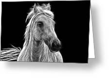 Energetic White Horse Greeting Card