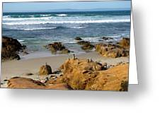 Energizing Seascape At Spanish Bay Greeting Card