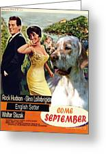 English Setter Art Canvas Print - Come September Movie Poster Greeting Card