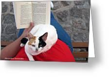 Enjoying Reading Greeting Card