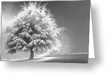 Enlightened Tree Greeting Card