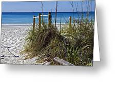 Enter The Beach Greeting Card by Susan Leggett