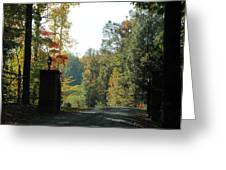 Entering Wine Country Greeting Card