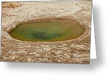 Ephedra Spring In West Thumb Geyser Basin Greeting Card