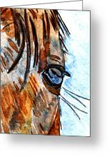 Equine Reflection Greeting Card