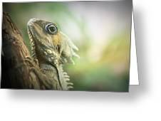Eric The Lizard Greeting Card