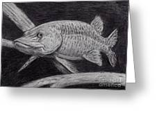 Esox Masquinongy Greeting Card by Larry Green