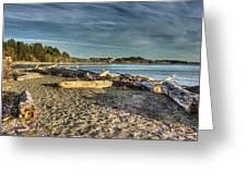 Esquimalt Lagoon - Logs And Beach Greeting Card
