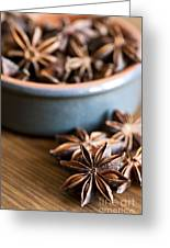 Essence Of Aniseed Greeting Card by Anne Gilbert