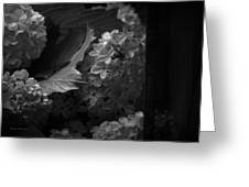 Essence Of My Soul In Black And White Greeting Card
