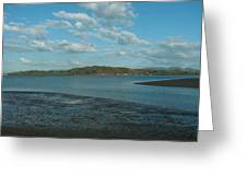 Estero Landscape Greeting Card