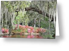 Estherville Plantation Greeting Card