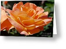Eternal Flame Greeting Card
