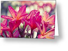 Eternal Spring Greeting Card
