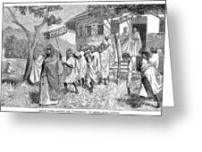Ethiopia Abuna, 1884 Greeting Card