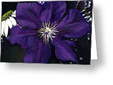 Etoile Violette - Clematis Greeting Card