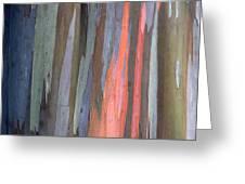 Eucalyptus Tree Bark Greeting Card