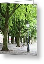 European Park Trees Greeting Card