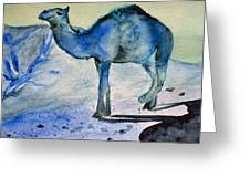 Even Camels Get The Blues Greeting Card