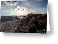 Evening Beach Greeting Card