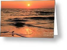 Evening Beach Stroll Greeting Card