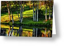 Evening Birches Painted Greeting Card