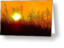 Evening Dunes Greeting Card