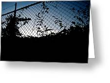 Evening Fence Greeting Card