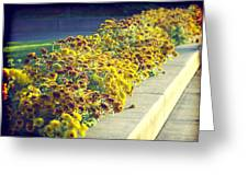 Evening Flowers Greeting Card