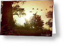 Evening Flying Geese Greeting Card