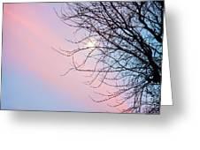 Evening Glow Greeting Card