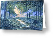 Evening In Wykeham Forest Greeting Card
