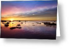 Evening Light Greeting Card