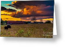 Evening On The Farm Five Greeting Card