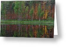 Evening Pond Greeting Card